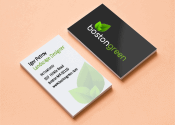 business-card-placement
